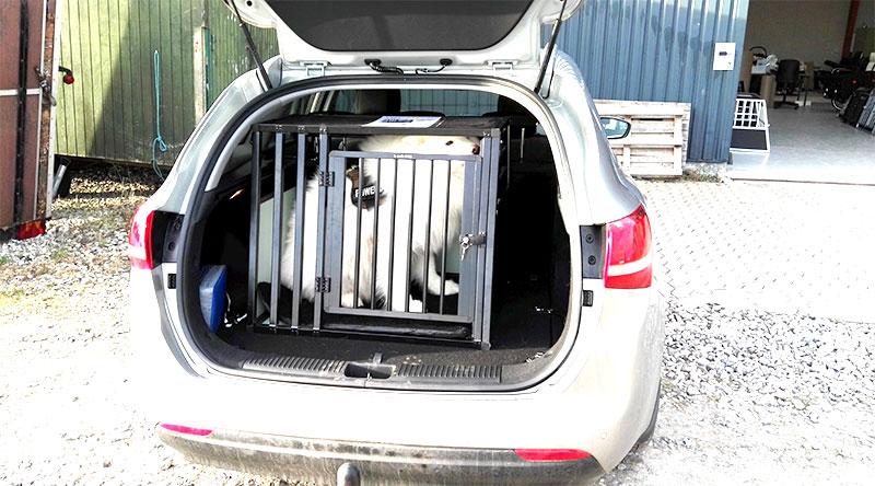 b-Safe Large Wide PRO hundebur i Kia Ceed årgang 2016