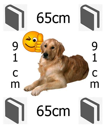 hundebur bil størrelse